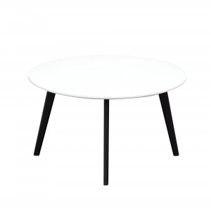 DS Coffee Table Ozone $115 in matte white and black legs