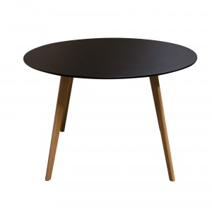 DS Dining Table Comet $280 in matte black and oak legs