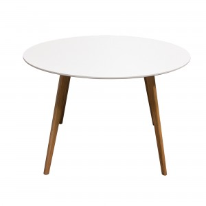 DS Dining Table Comet $280 in matte white and oak legs